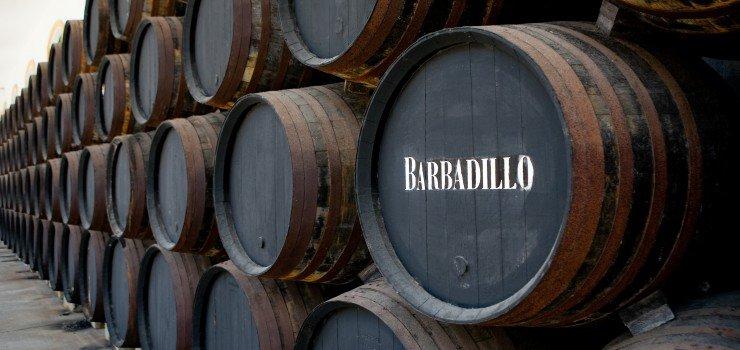 Bodega-Barbadillo