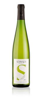 Schwach 'Pinot Blanc'