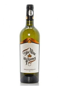 The vine in flames - Chardonnay